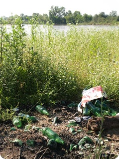 déchets en verre au bord de l'Allier